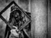 carnevale-di-schignano (38)